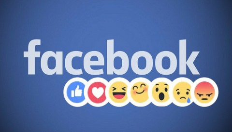 Facebook's new Reactions feature made us go yay, wow, love and more! More on that here
