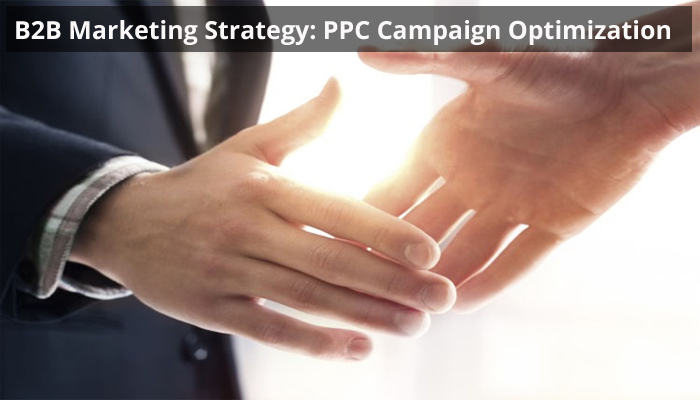 B2B Marketing Stratergy-PPC Campaign Optimization